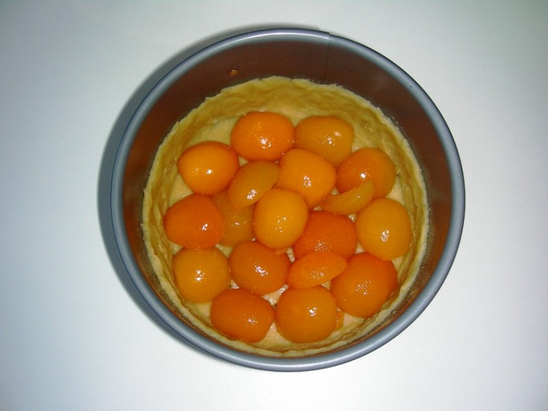 mit Aprikosen belegen