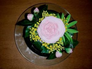 Geburtstagtorte mit Kamelien und Mimosen