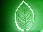 Blattgrün ausstechen und prägen