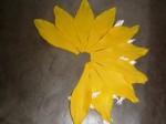 Blütenblätter zum Kreis anordnen