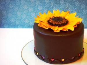 Sonnenblumen-Torte