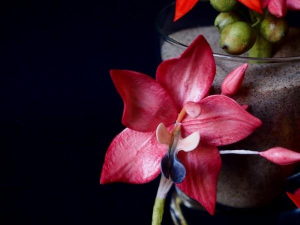 Spathoglottis Orchidee