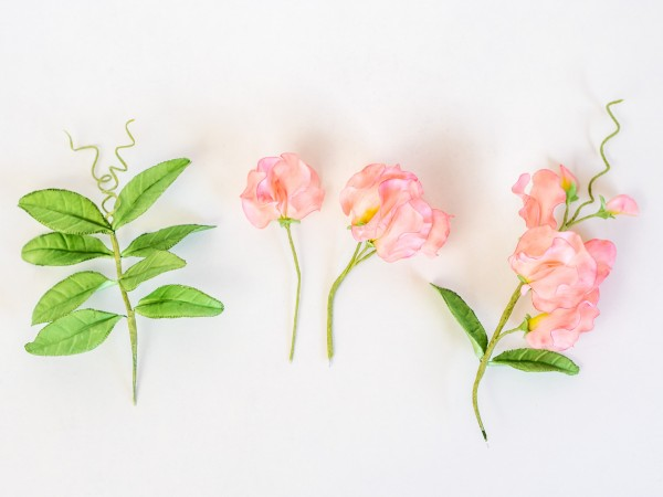 Wicken aus Blütenpaste