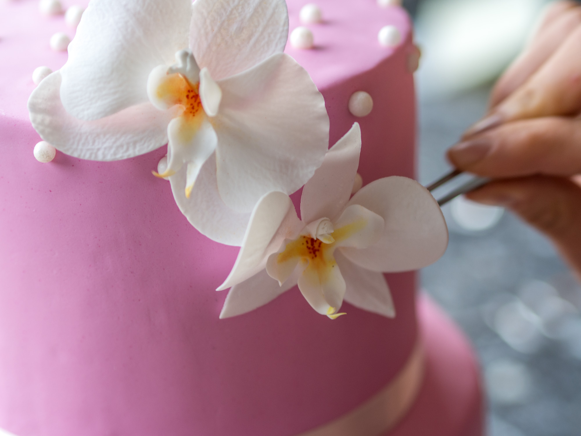eine orchideen torte zum geburtstag ofenkieker. Black Bedroom Furniture Sets. Home Design Ideas
