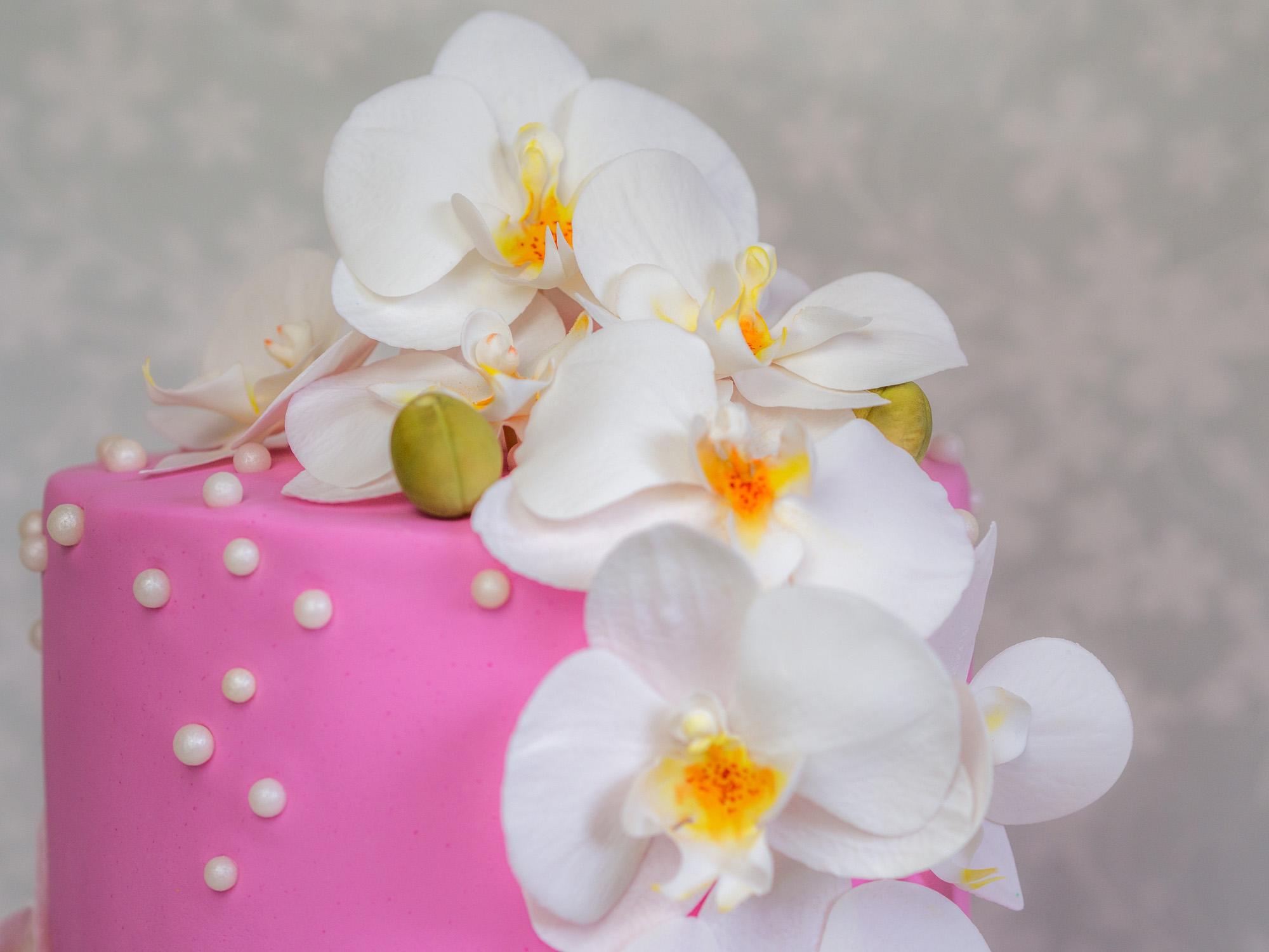 Eine orchideen torte zum geburtstag ofenkieker eine orchideen torte zum geburtstag thecheapjerseys Choice Image