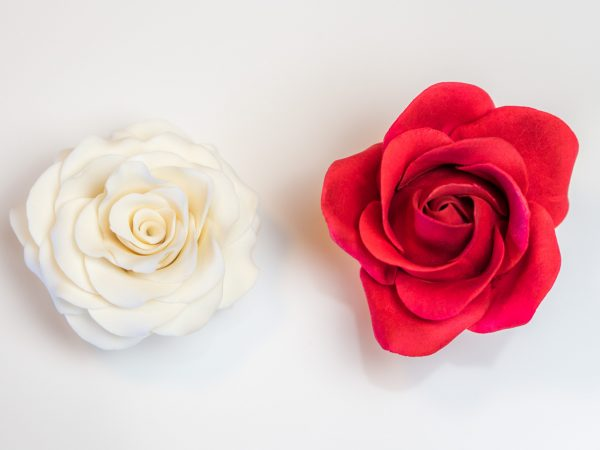 Rose Vergleich