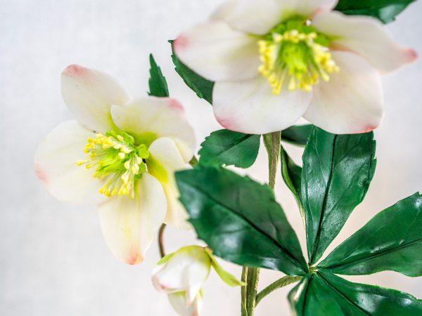 Christrose aus Blütenpaste