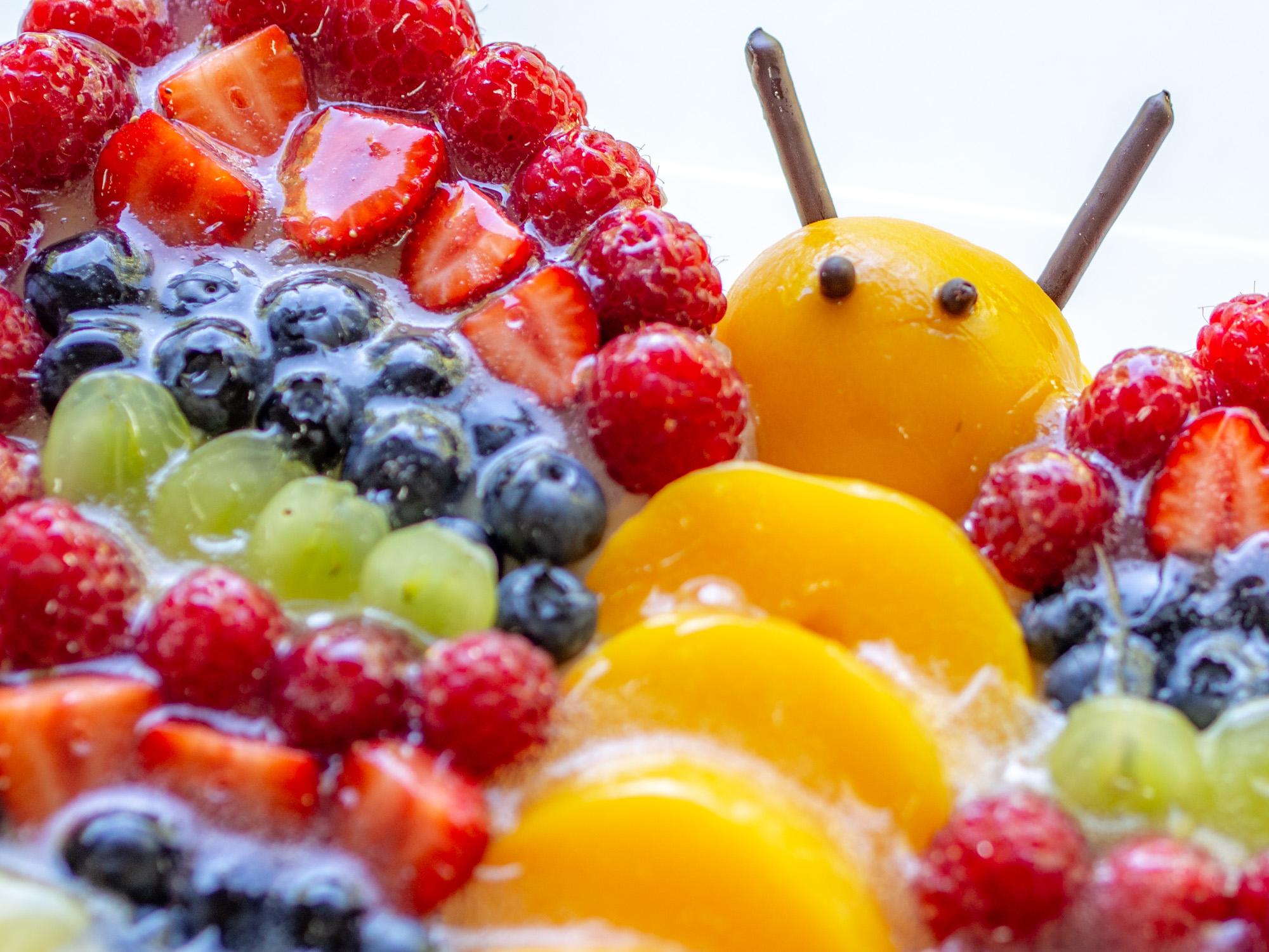 Bunter Schmetterlingstorte Mit Viel Obst Dekoriert Perfekt Für Kinder