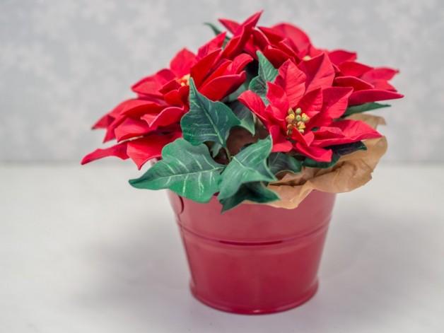 Torte mit Weihnachtsstern aus Blütenpaste {Video}