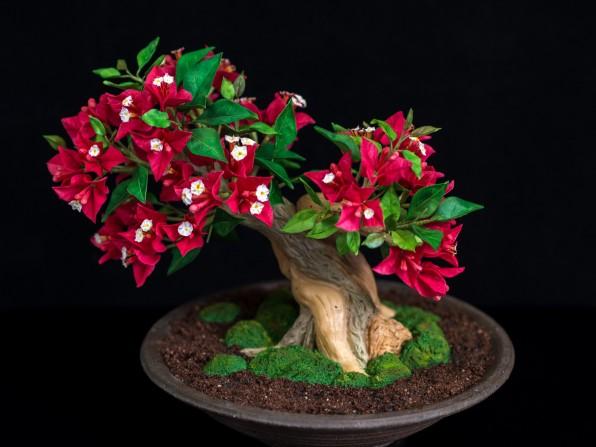 Making Of Bougainvillea Bonsai aus Blütenpaste {Video}