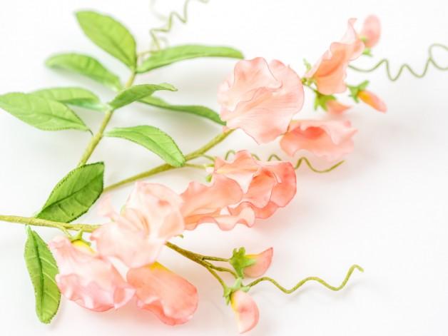 Edelwicke aus Blütenpaste