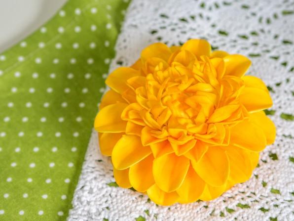 Einfache Dahlie aus Blütenpaste**