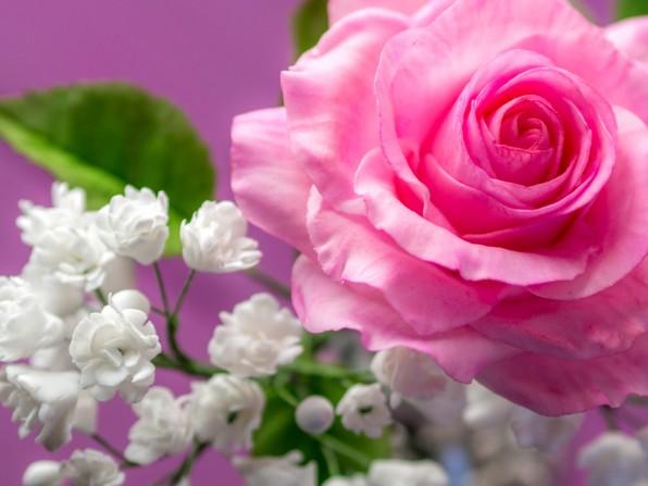 Schleierkraut aus Blütenpaste