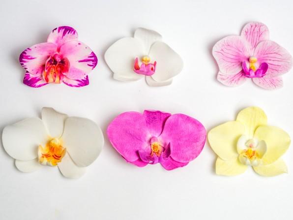 Einfache ungedrahtete Orchidee aus Blütenpaste – in 6 Farben und 3 Methoden {Video}