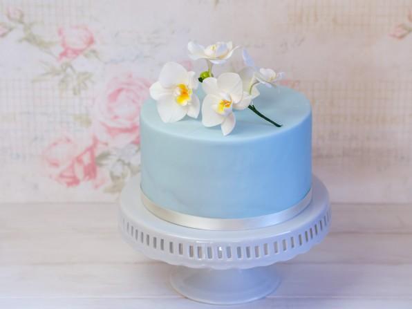 Eine Orchideen-Torte für 17:30 Sat1 regional